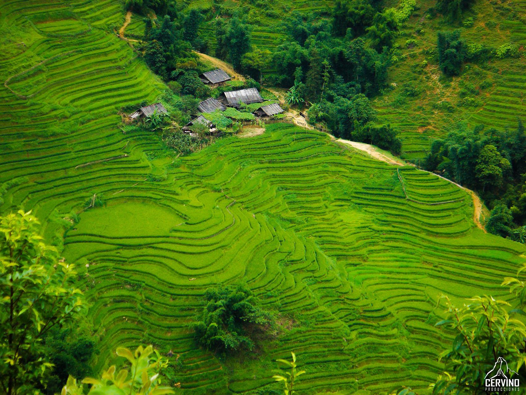 Portfolio_Cervino_2009_ Vietnam_03